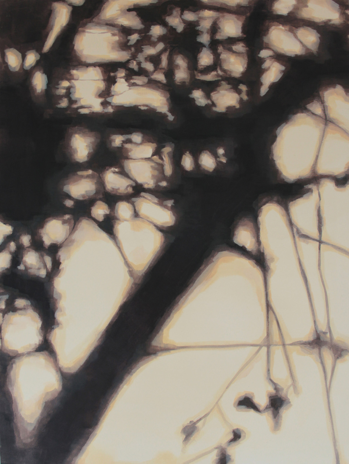 Sin título III. Mixta sobre lienzo, 130 x 97 cm. 2012